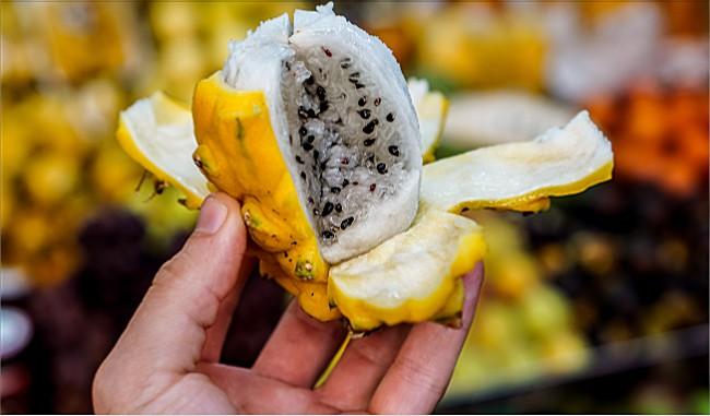 Dragon Fruit Seeds