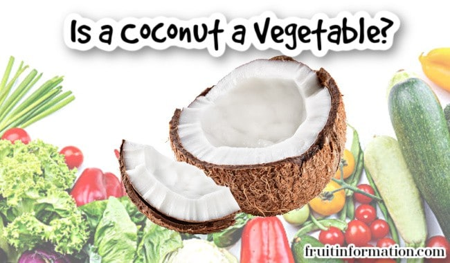 Is a Coconut a Vegetable