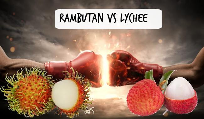 Rambutan vs Lychee