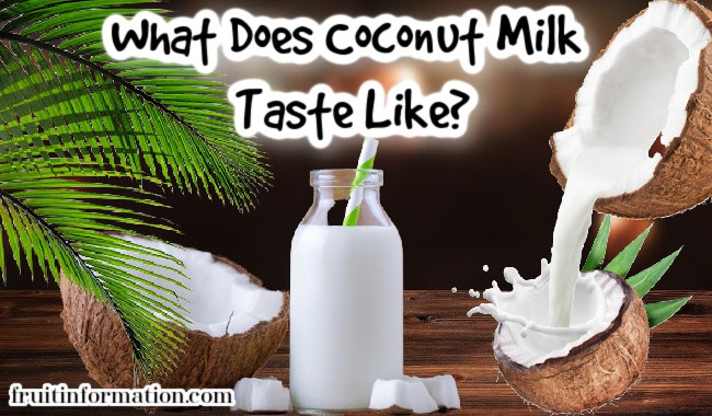 What Does Coconut Milk Taste Like
