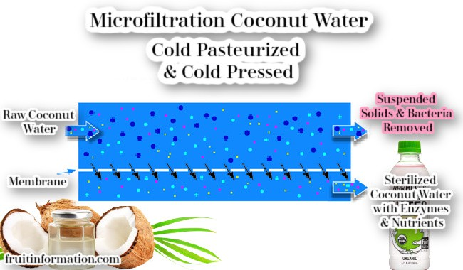 Microfilteration Coconut Water