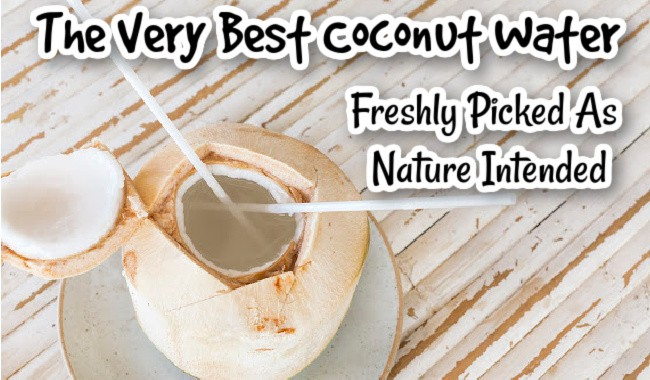 The Very Best Coconut Water