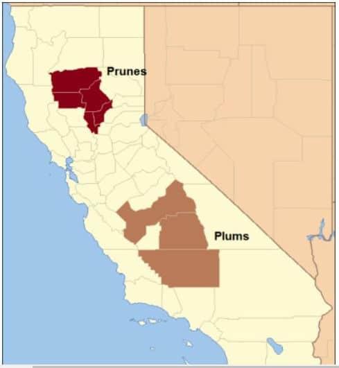 Major Plum Growing Regions in California
